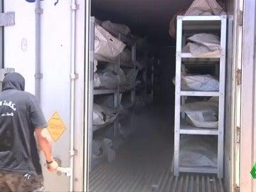 Los cuerpos de los terroristas de Daesh acumulados en Sirte