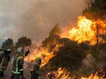 Incendio registrado en el ayuntamiento orensano de Monterrei, en la parroquia de Infesta