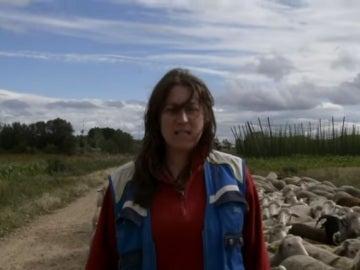 Una captura de la versión rural de 'Despacito' de 'Ganaderas en red'