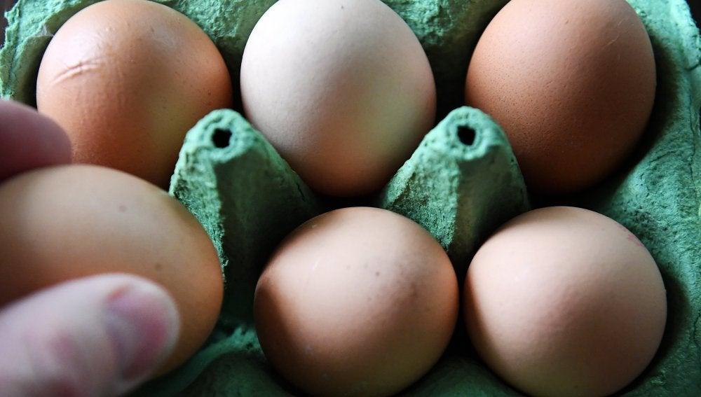 Los huevos contaminados han llegado a Rumanía