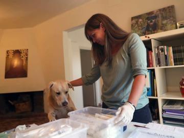 la especialista en perros de asistencia y detección Ingrid Ramon prepara unas muestras para Blat