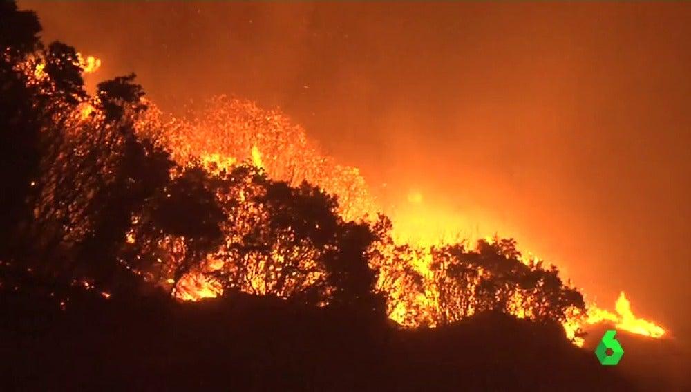 El incendio ha quemado 2.000 hectáreas