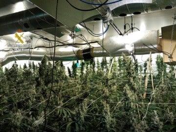 Laboratorio de drogas en Ibiza