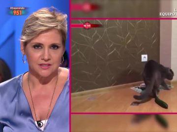 Gloria Serra comenta con su estilo un vídeo de gatos