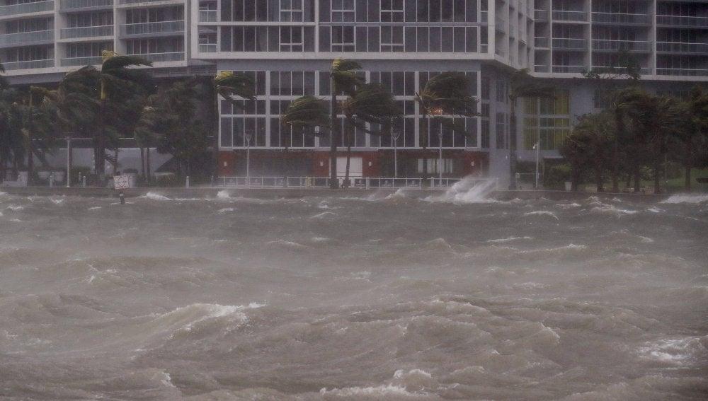 Huracán Irma en Miami, Florida