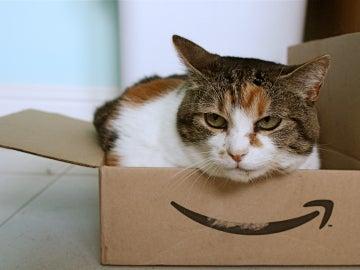 Cuidado con las reseñas de Amazon, a veces hay gato encerrado