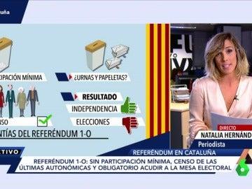 Garantías del referéndum