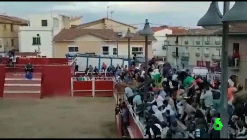Dos vaquillas saltan a la grada provocando el pánico entre los asistentes en las fiestas de Santacara, Navarra