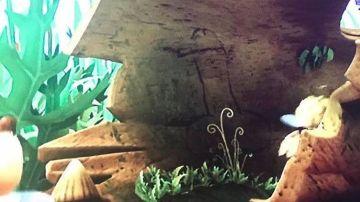 El 'pene' que aparece en el episodio de 'La Abeja Maya'
