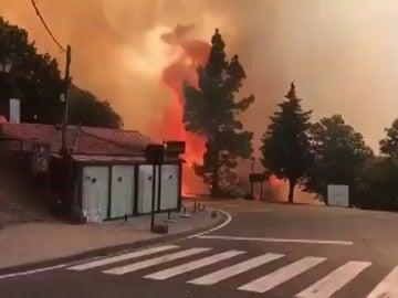 Siguen sin control el incendio de Gran Canaria, con 800 desalojados y 2.000 hectáreas calcinadas