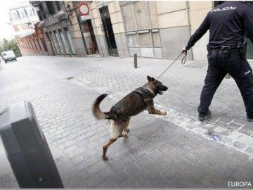 Convenio Europeo de Protección de Animales de Compañía