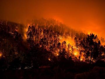 Incendio en el parque natural de Xurés, Ourense