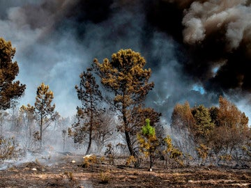 Incendio en Galicia (13-10-2017)
