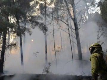 El aterrador balance de incendios en Galicia en lo que va de otoño