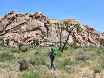 Una joven marcha por un sendero del Parque Nacional Joshua Tree