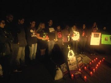 Vigilia por el derecho de los animales frente a un matadero de Madrid