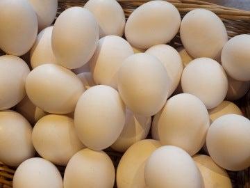 Imagen de archivo de huevos blancos