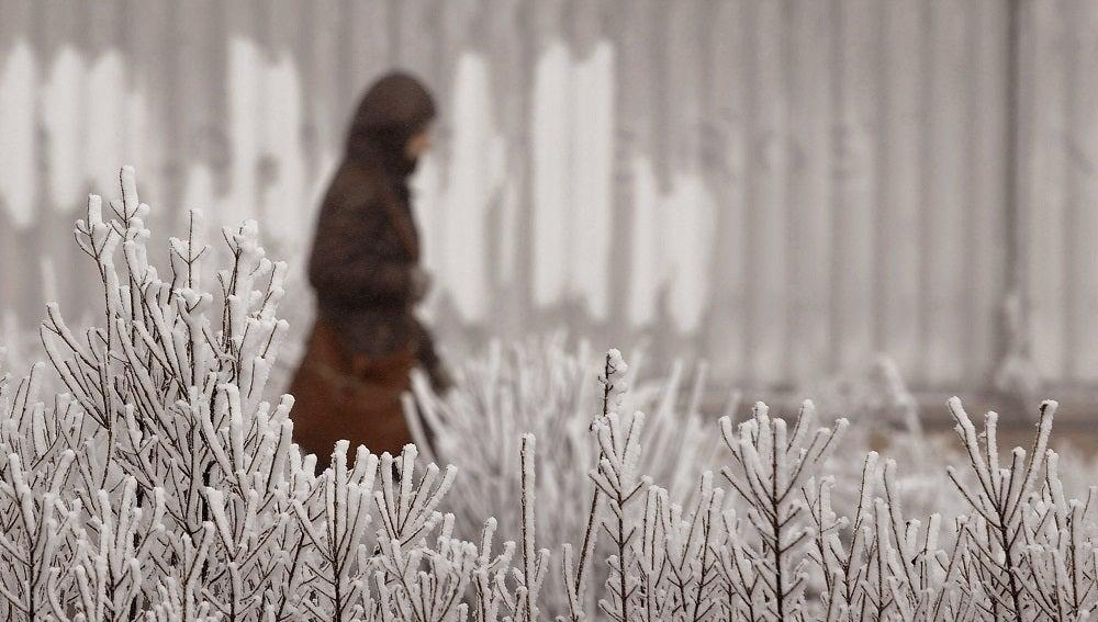 Una mujer camina por Valladolid, que presenta una imagen blanca por las heladas