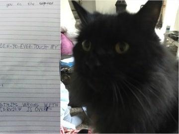 La carta y el gato de la pequeña