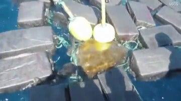 La Guardia Costera de Estados Unidos rescata a una tortuga marina enredada entre siete fardos de cocaína