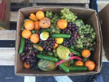 Las frutas y verduras encabezan la lista de alimentos que más se desechan