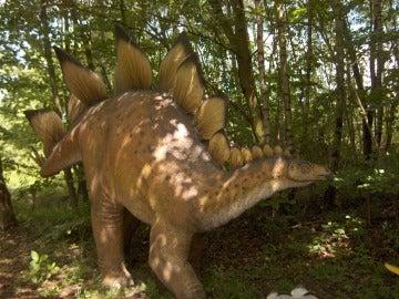 Los estegosaurios como el de esta réplica tenían espinas en la cola