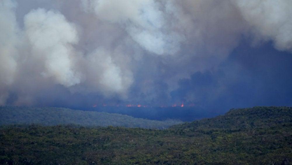 Incendio en un parque natural al sur de Sídney