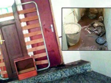 Uno de los perros fallecidos tras ser encerrado en un pequeño espacio