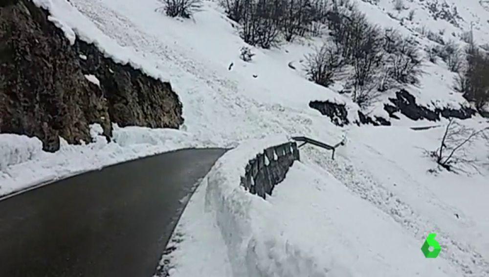 Un alud cae en Asturias