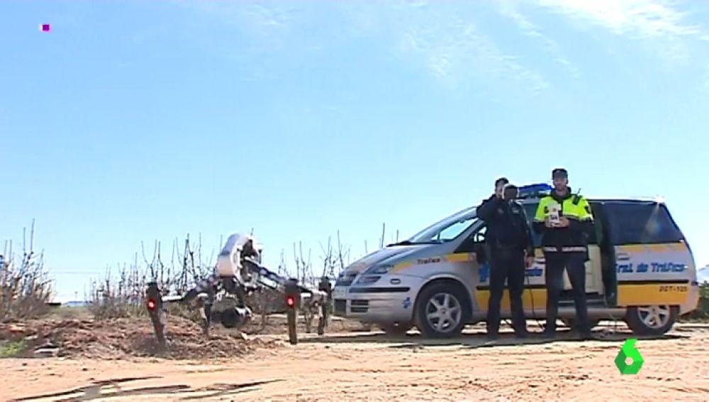 Los agricultores se arman con drones para evitar los robos de naranjas