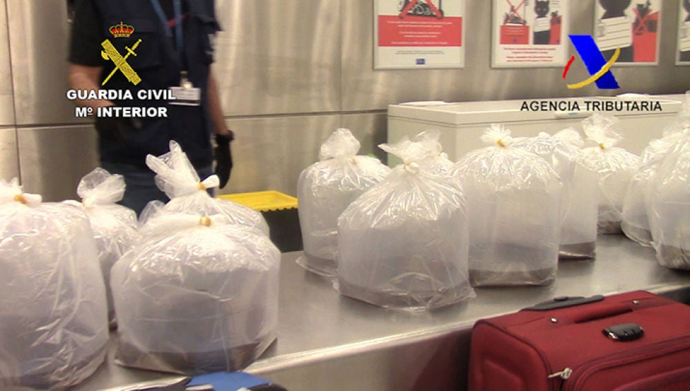 Imagen de las angulas incautadas en el aeropuerto de Barajas