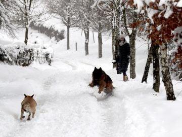 Una mujer observa a unos perros en la nieve tras la fuerte nevada que ha caído en la localidad vizcaína de Urkiola