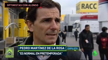 Alonso2Jugones