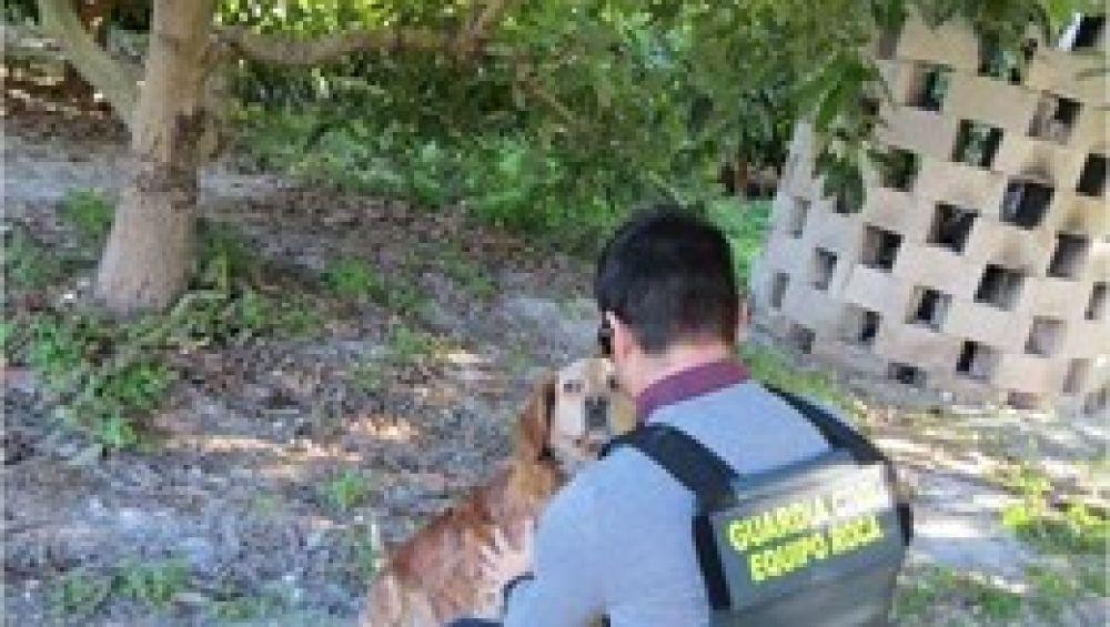 Imagen de la Guardia Civil junto al perro víctima de la paliza