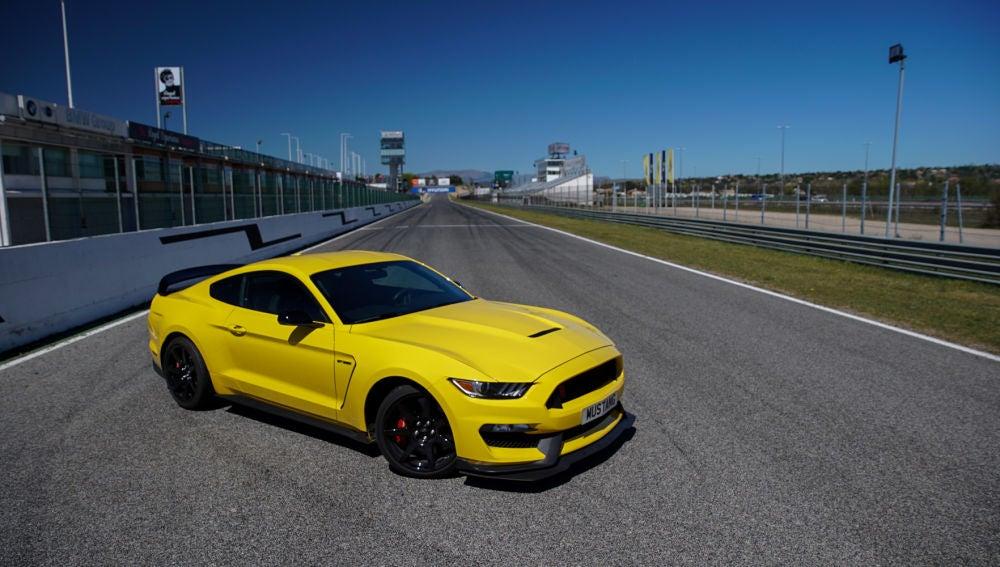 Mustang-Shelby-GT350.jpg