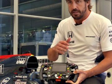 volante-formula1-alonso-0617-01-e1498551244419.jpg