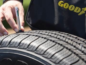 The_Goodyear_Tire_Check_NC03.jpg