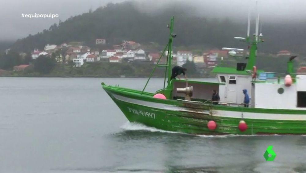 Tras los pasos de pescadores furtivos de pulpo: así funciona este lucrativo negocio negro en Galicia