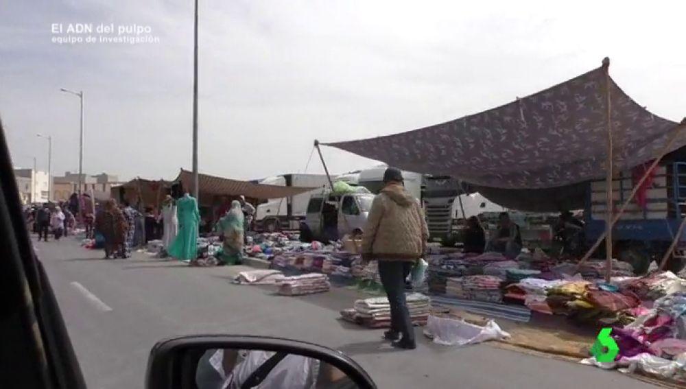 Resultado de imagen de ¿De dónde viene el pulpo que compramos? Así se trabaja en Sahara Occidental, el segundo caladero de pulpo más grande del mundo