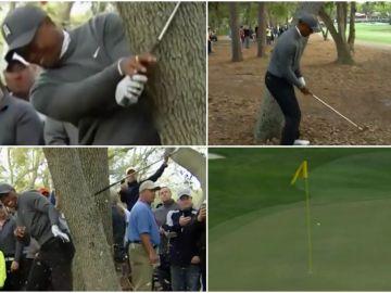 Gran golpe de Tiger Woods