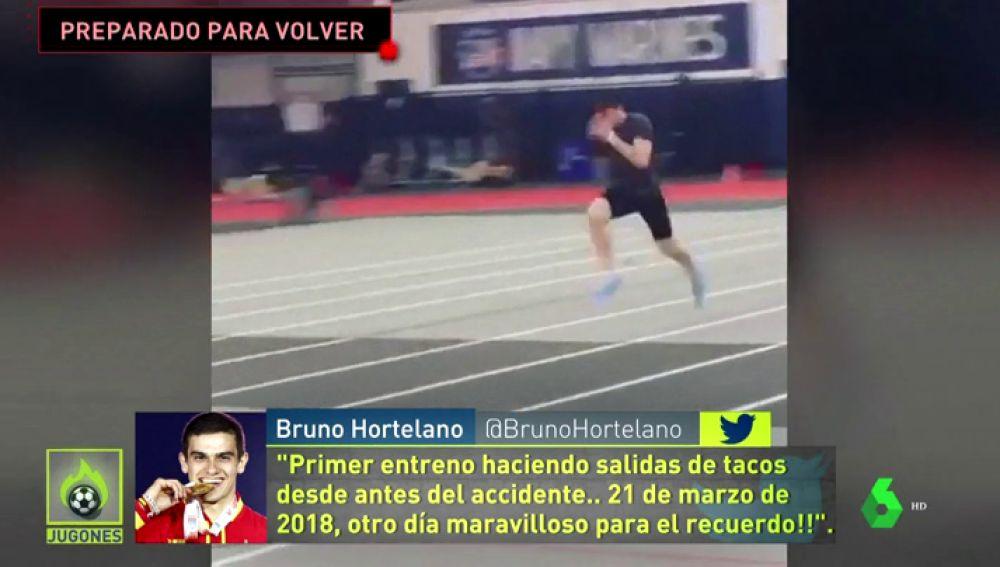 hortelano_bruno