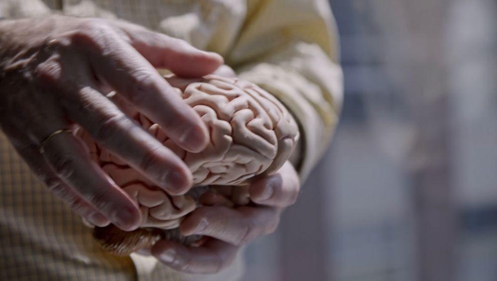 """Rafael Yuste, del proyecto Brian: """"Podremos solucionar la lacra de las enfermedades psicológicas que nos hacen psicóticos"""""""