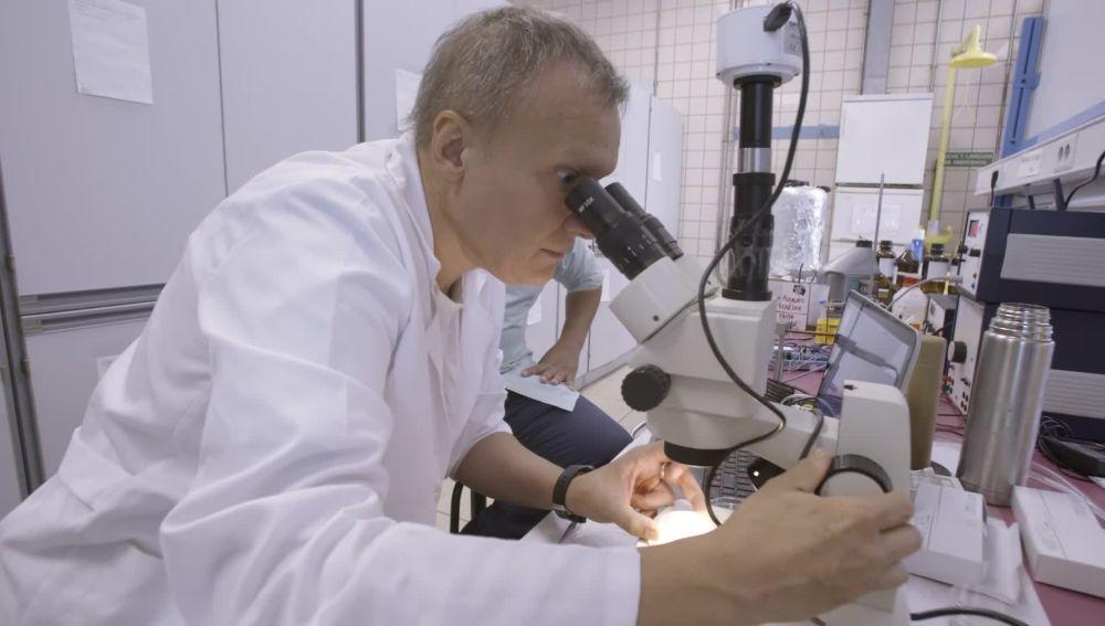 El proyecto de Ramón Risco que revive a seres vivos a través de la criopreservación