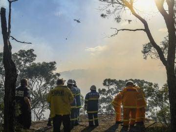 Varios bomberos en las labores de extinción del incendio forestal