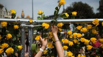 Rosas amarillas en Sant Jordi