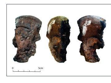 Los pobladores neoliticos de Cataluna ya usaban hongos para hacer fuego