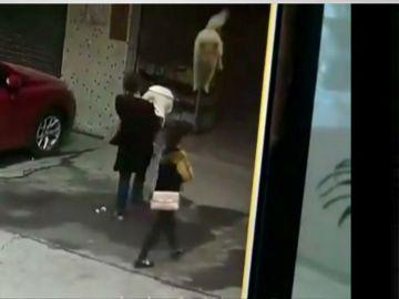 Perro cae en la cabeza de una mujer en China