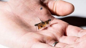RoboFly pesa poco más que un palillo y vuela gracias a un rayo láser