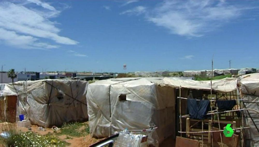 El 'mar de plástico' de Lepe, donde sudan los últimos inmigrantes explotados de Europa