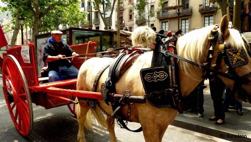 Imagen de un carruaje (Archivo)